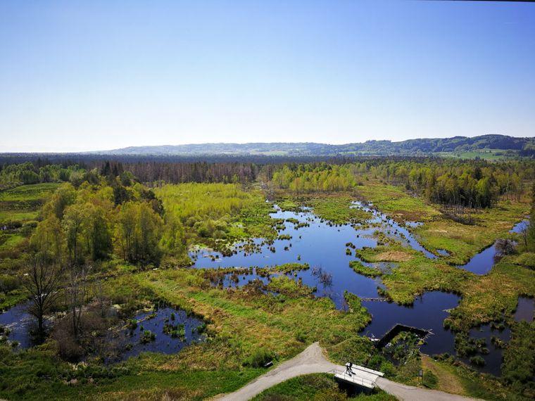 Der Pfrunger-Burgweiler Ried ist das zweitgrößte Moorgebiet im südwestlichen Deutschland.