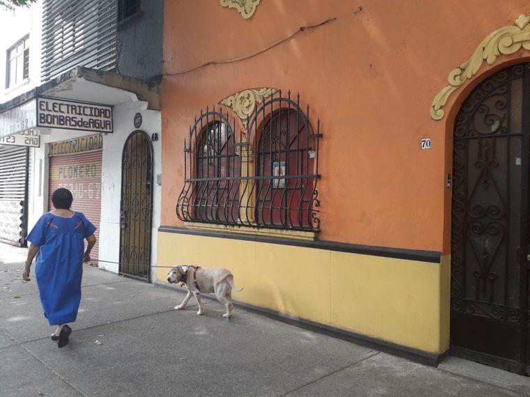 Gassirunde durch das Trendviertel Condesa.