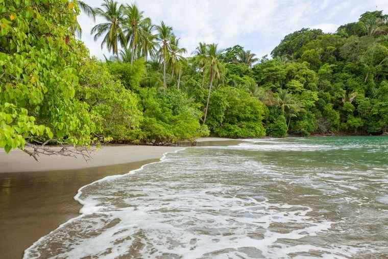 Weißer Sandstrand an der Pazifikküste Costa Ricas, im Hintergrund der Regenwald des Manuel Antonio Nationalparks.