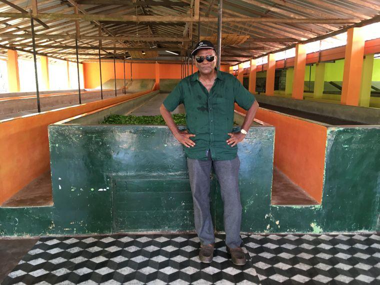 Herman Gunaratne ist seit 45 Jahren im Teegeschäft in Sri Lanka.