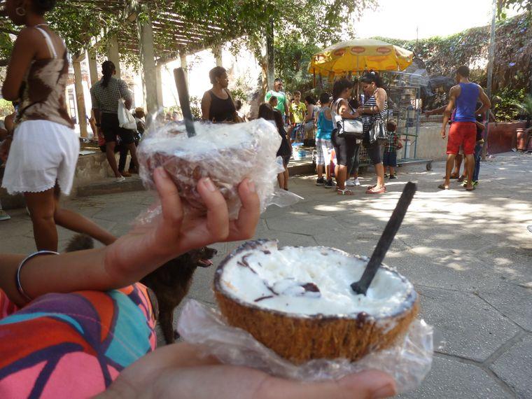 Frisches Kokoseis aus der Kokosnuss.