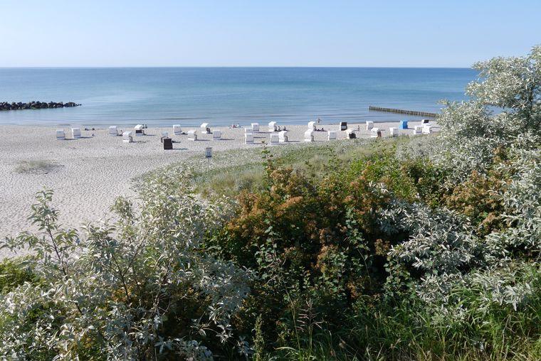 Der Ahrenshooper Strand hat alles, was ein Traumstrand braucht: Weißer Sand, blaues Meer, sanfte Dünen und viel Platz für dich und deine Liebsten.