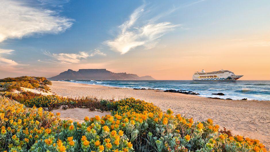 """Eine Visualisierung der """"Aida Mira"""" vor der Küste Südafrikas."""