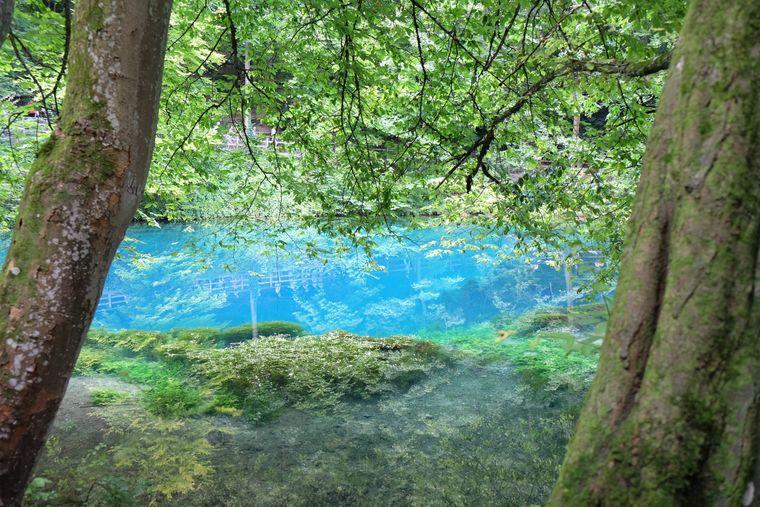 Seinen Namen verdankt der Blautopf in Baden-Württemberg seiner auffälligen Farbe.
