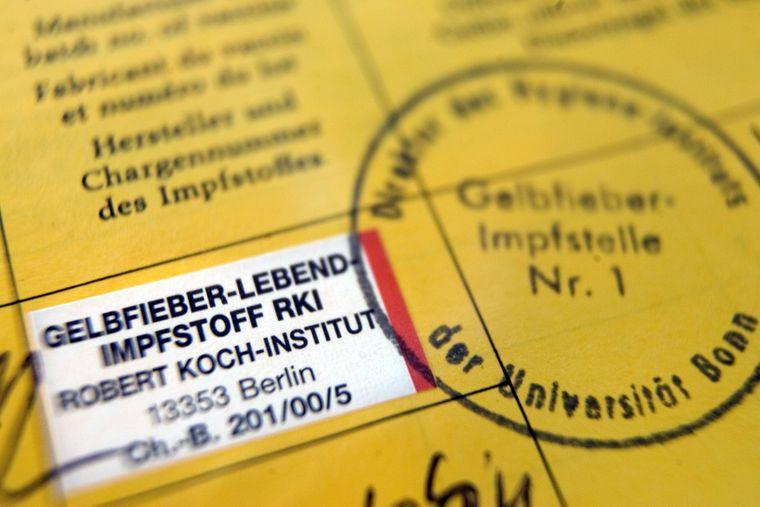 Eine Impfung gegen Gelbfieber kann lebensrettend sein.