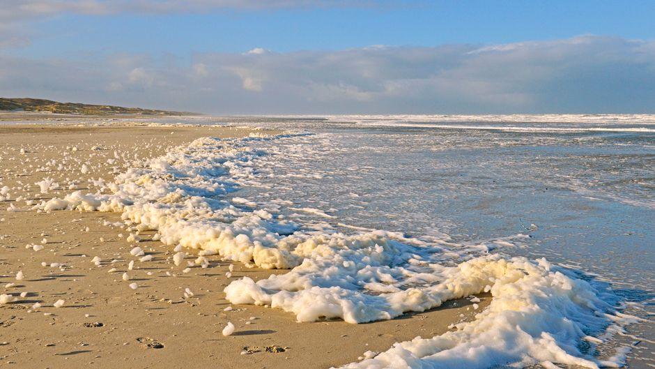 Schaum von Algen an der Wasserkante der Nordsee, Juist.