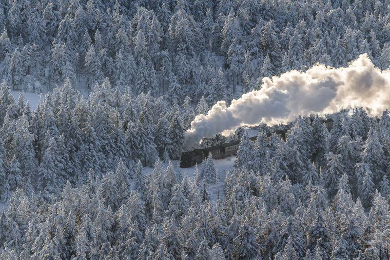 Dampflok Brockenbahn im Winter