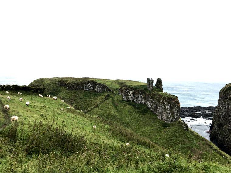 Vom berühmten Dunseverick Castle an der Coast of Antrim ist heutzutage nur noch eine Ruine zu sehen.