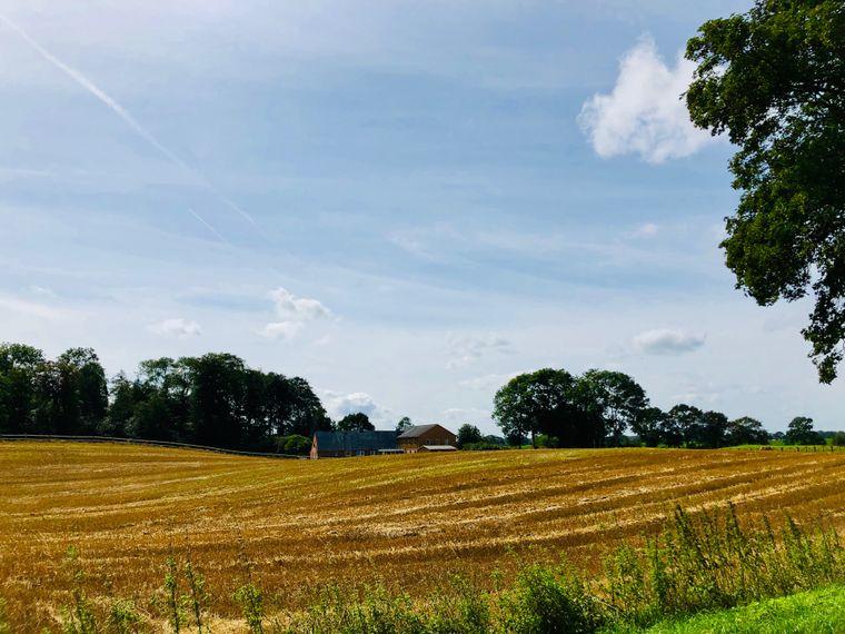 Typisch Spätsommer in Schleswig-Holstein: Auf den Feldern (hier bei Rieseby) ist die Ernte eingefahren.