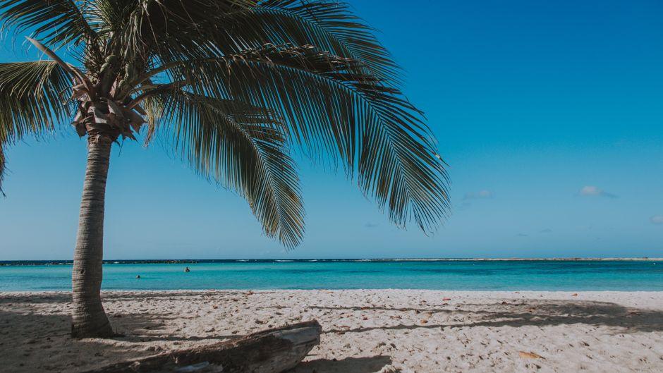 Die niederländische Karibikinsel Aruba ist für ihre feinen Sandstrände wie den Baby Beach bekannt.