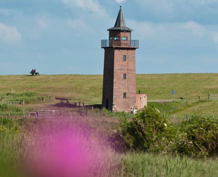 Der Leuchtturm Dagebüll steht mitten in der Natur.