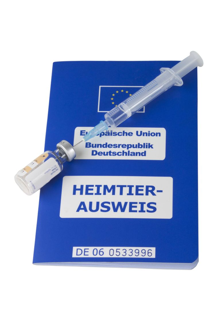 EU-Heimtierausweis und eine aktuelle Tollwut-Impfung