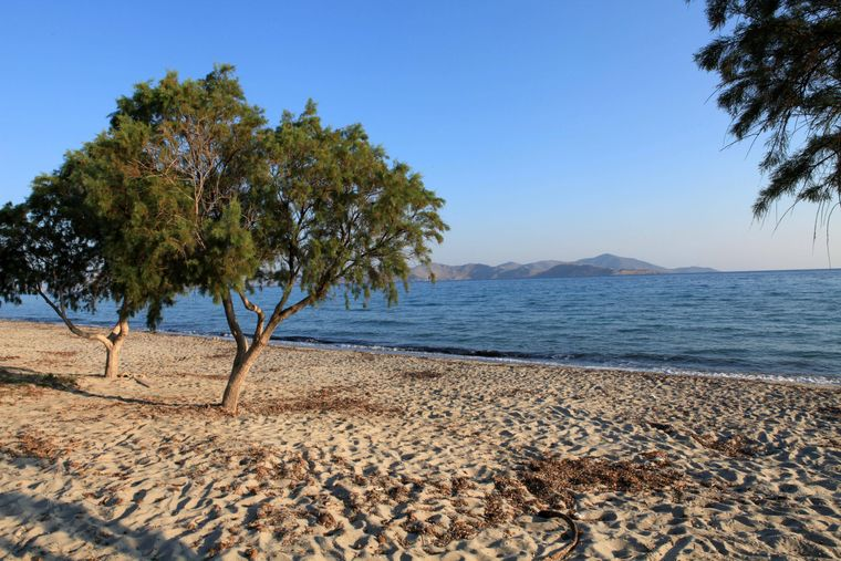 Der Tigaki-Strand auf Kos.