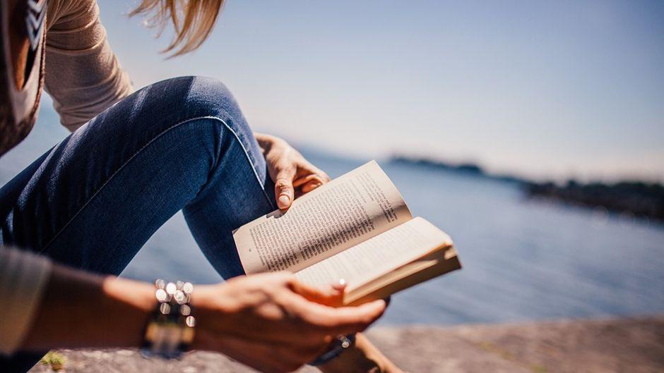 Reiseroman lesen