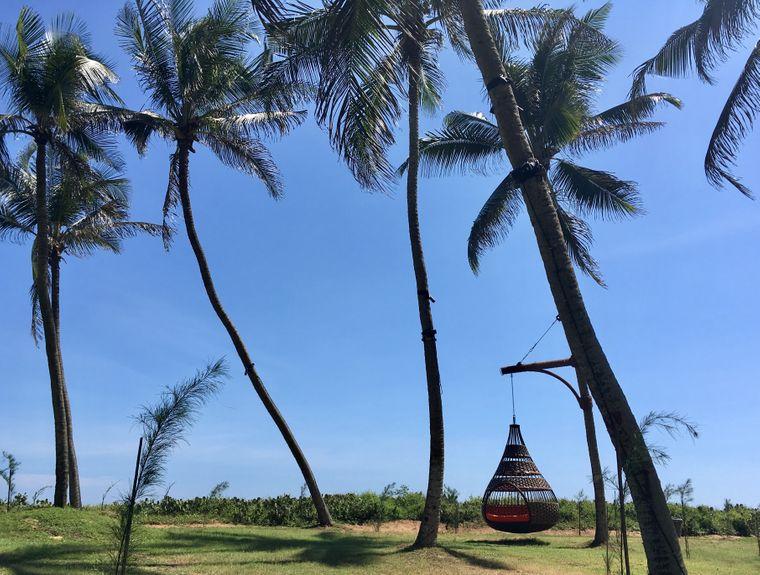 Entspannen im Hängestuhl zwischen Palmen in Sri Lanka.