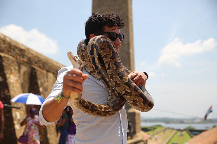 …und Eduardo wurde eine Schlange auf die Schultern gelegt, die (wie es sich für eine Würgeschlage gehört) versuchte, ihre Beute zu erwürgen.
