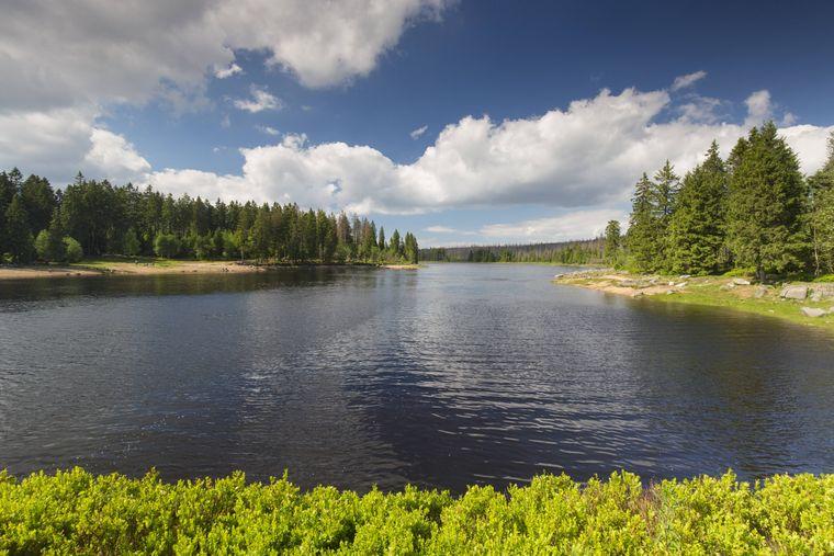 Der Oderteich gehört zum Weltkulturerbe Oberharzer Wasserwirtschaft