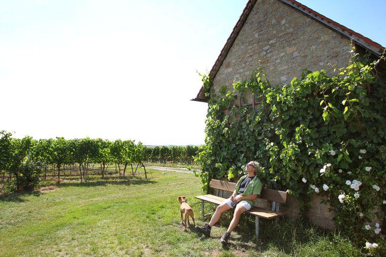 Auf der WeinKultTour bieten sich verschiedene Möglichkeiten zur Einkehr – du kannst aber auch in der malerischen Landschaft eine Brotzeit verzehren und den Ausblick genießen.
