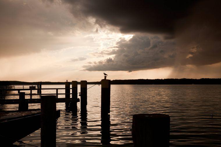 Bei Dämmerung ist der Werbellinsee besonders schön – unter der Wasseroberfläche warten einige Abenteuer auf dich.