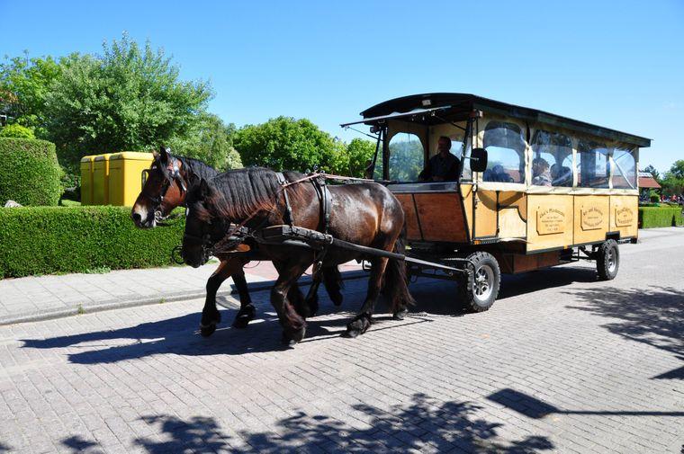 Auf der Insel Langeoog bringen einen Pferde von einem zum anderen Ort.