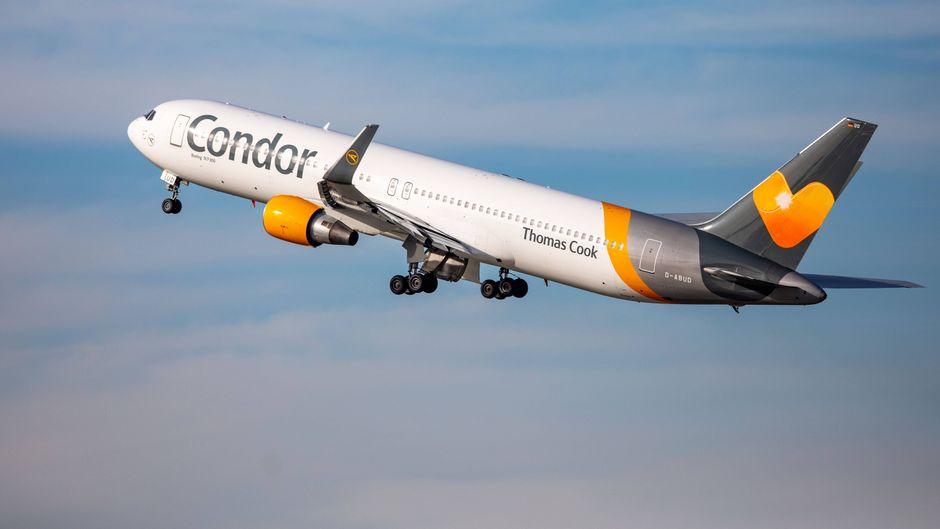 Condor betroffen: Thomas Cook will Flotte verkaufen.