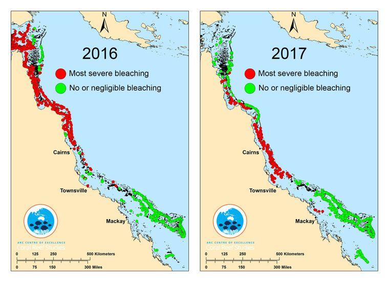 Diese Karte zeigt, wie sehr sich das Korallensterben ausbreitet.