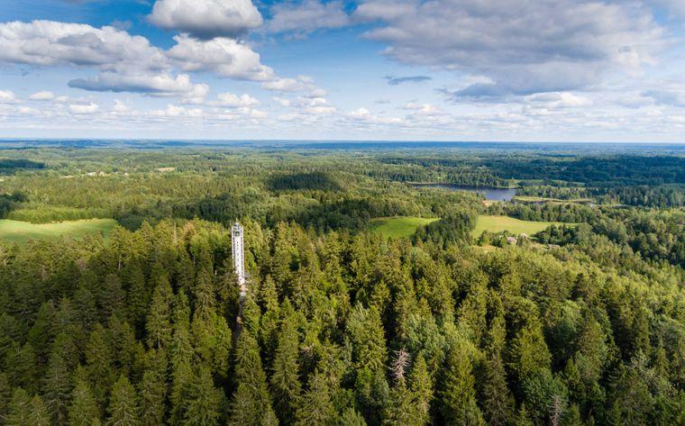 Der Suur Munamägi in Estland ist mit 318 Metern die höchste Erhebung des gesamten Baltikums.