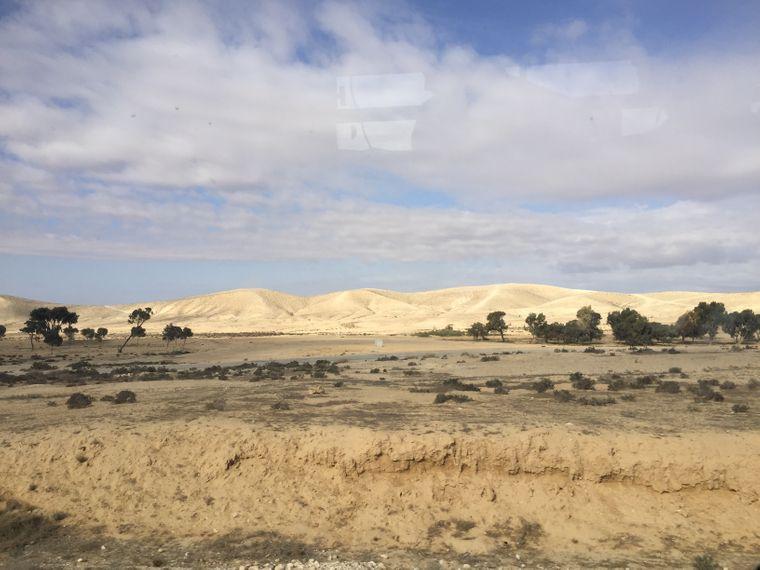 Die Wüste auf der Busfahrt von Eilat zurück nach Tel Aviv.