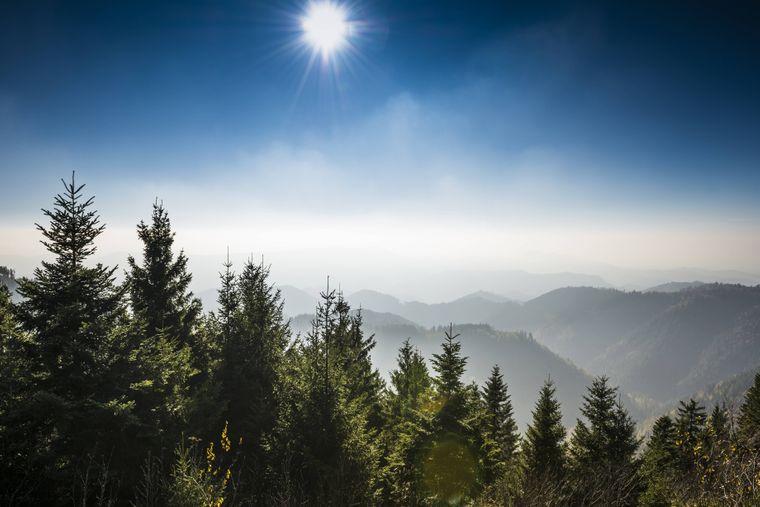 Nord-Schwarzwald in Baden-Württemberg.