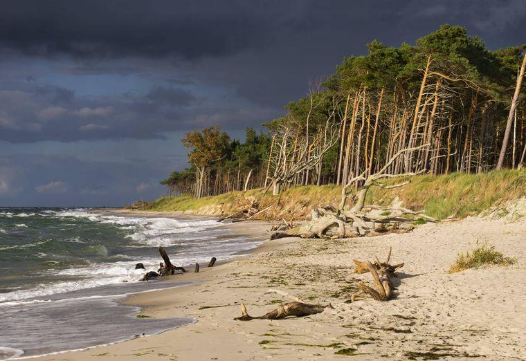 Dunkle Wolken liegen über dem Darßer Weststrand an der Ostsee.