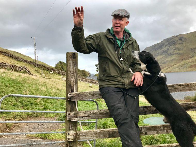 In Donegal bildet der Farmer Joe Joyce seine Hütehunde aus. Die Border-Collies gehören zu jeder irischen Schafherde.
