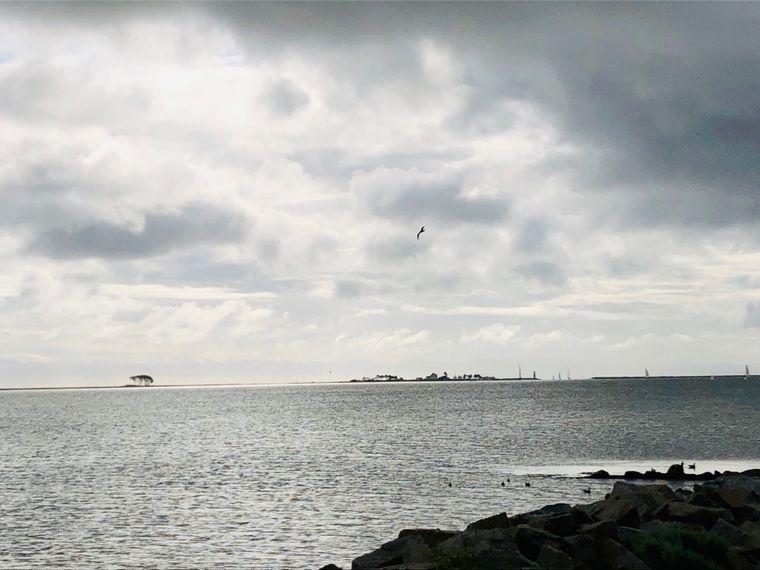 Freie Sicht aufs Meer: Bei Maasholm mündet die Schlei in die Ostsee.