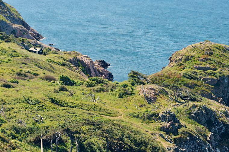 Blick vom Kullaberg nach Kattegat – bei einer Wanderung erwartet Reisende Natur pur.