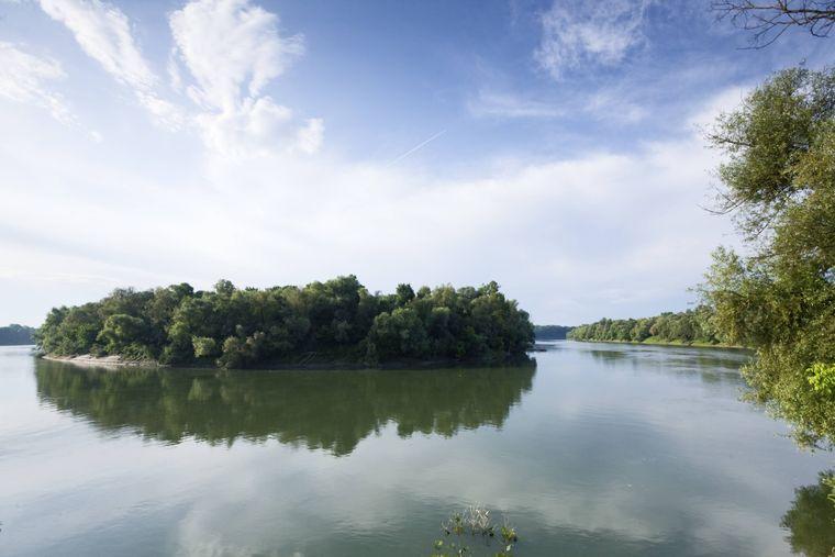 Der Fluss Sava in Kroatien.