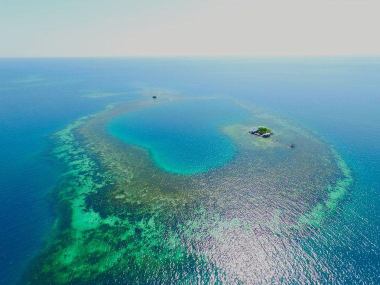 Die Bird Island liegt in einem Korallenriff.
