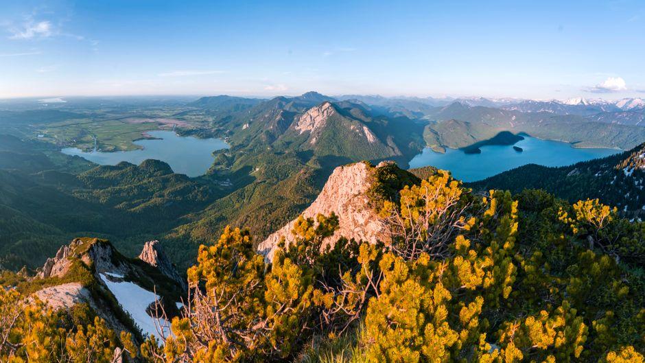 Ausblick vom Herzogstand auf den Kochelsee und den Walchensee mit Rabenkopf. Dort ist weniger los.