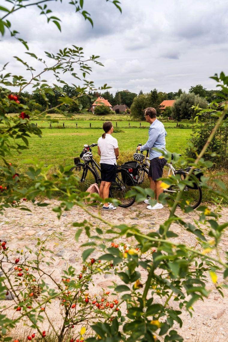 Radfahrer in der Heideregion Uelzen.