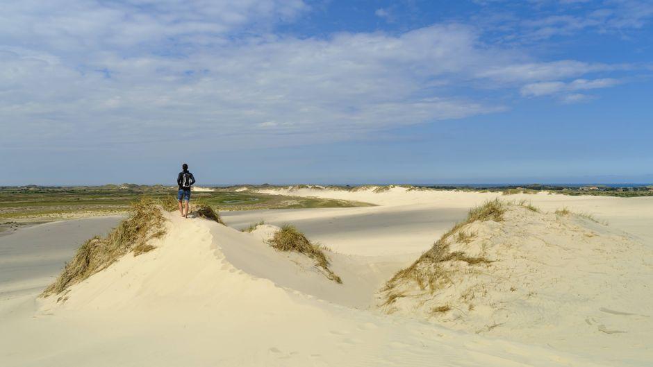 Ein blauer Himmel, weiße Dünen und eine sagenhafte Aussicht: Dänemarks Strände locken jährlich eigentlich viele Urlauber.