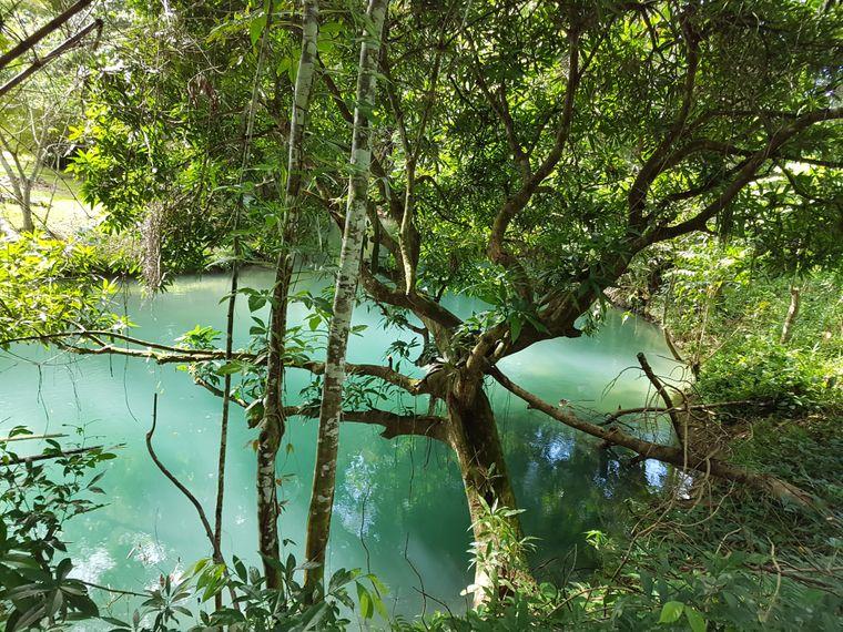Das Blue Hole auf Jamaika macht seinem Namen alle Ehre.
