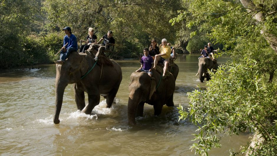 Elefantenreiten in Thailand.