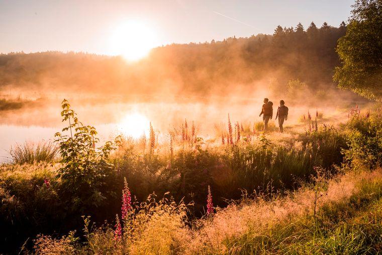 In der Premium-Wanderregion Saar-Hunsrück zwischen dem Dreiländereck Deutschland – Frankreich – Luxemburg kannst du einen romantischen Sonnenaufgang bei einer Wanderung am Forellenhof entlang machen oder in 42 Meter Höhe auf dem Baumwipfelpfad Saarschleife schlendern.