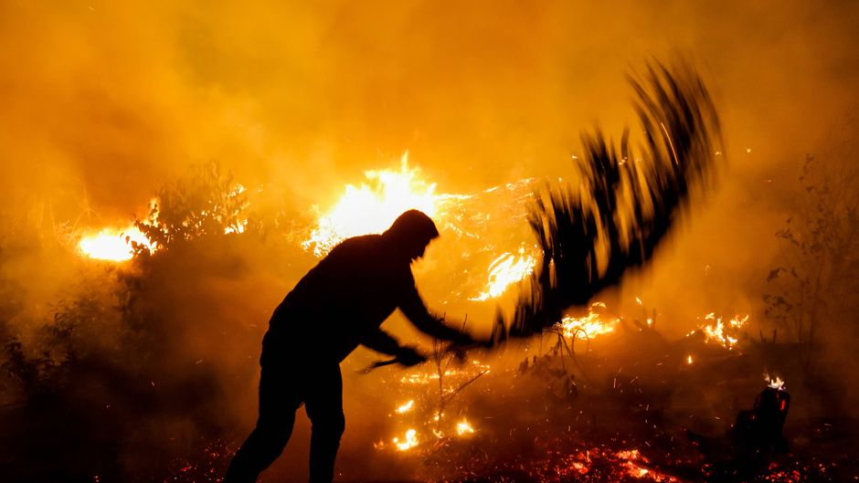 Die Lage in Brasilien ist dramatisch: Die Zahl der Regenwaldbrände steigt wieder an.