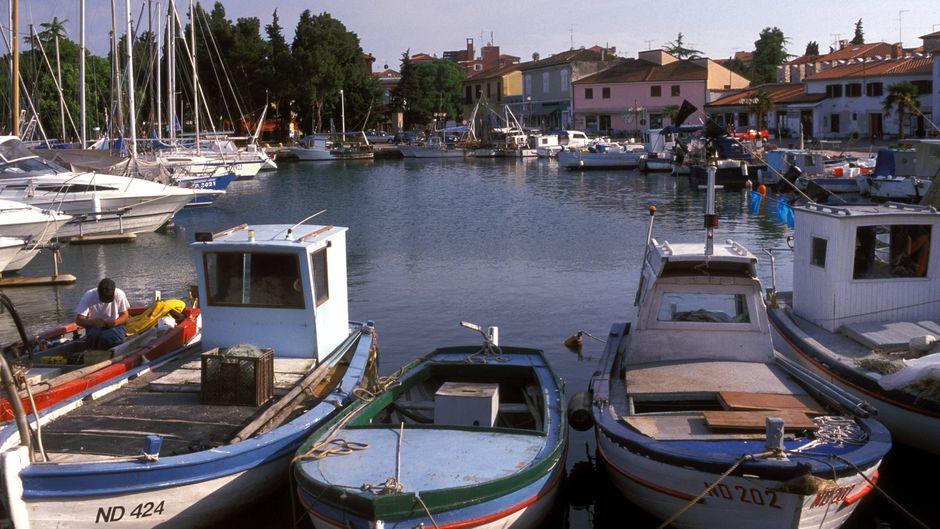 Hafen mit Fischerbooten in Novigrad in Koratien