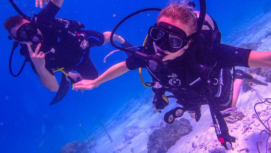 Sadin ist mittlerweile Divemaster und Alma Advanced Open Water Diver.