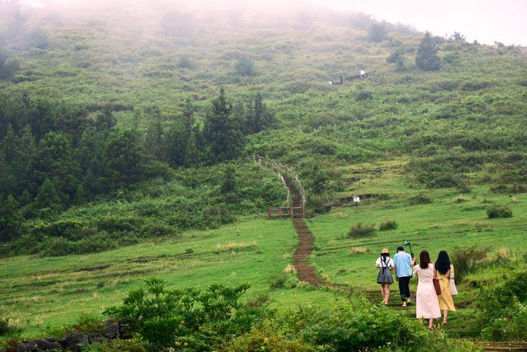 Eine Wanderung durch die wunderschönen Landschaften der Insel Jejudo, vorbei an Bergen und dem weiten Ozean, wird Sie ganz schnell mit neuer Energie erfüllen