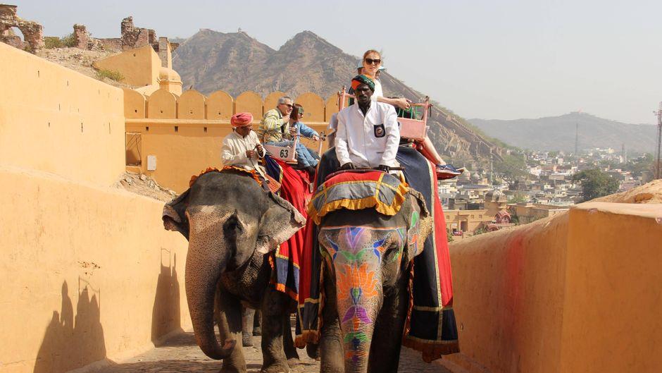 In Jaipur gehört Elefantenreiten an vielen Orten für Touristen dazu.
