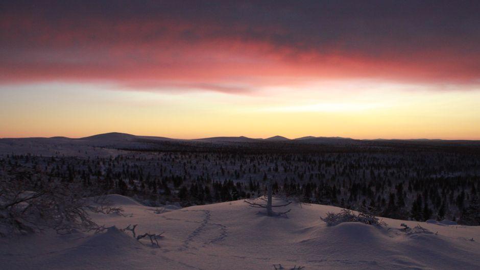 Lappland im Winter.
