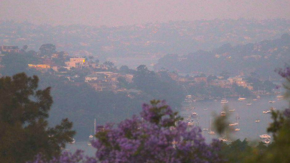 Rauchschwaden in Northbridge, einem Vorort von Sydney, Australien.
