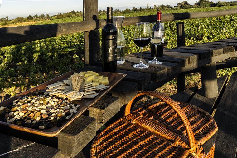 Zu einem Picknick in den chilenischen Weinbergen gehört natürlich auch das ein oder andere Glas Wein.