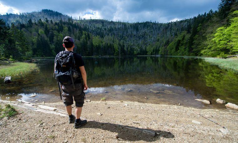 Ein Wanderer steht am Rachelsee im Nationalpark Bayerischer Wald.
